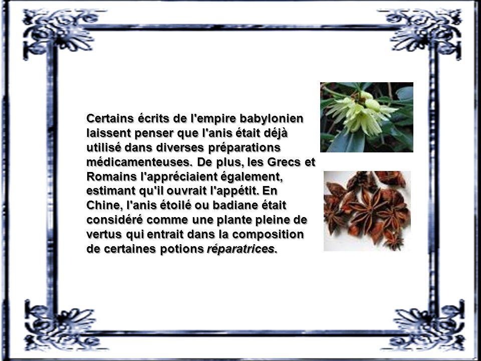 Certains écrits de l empire babylonien laissent penser que l anis était déjà utilisé dans diverses préparations médicamenteuses.