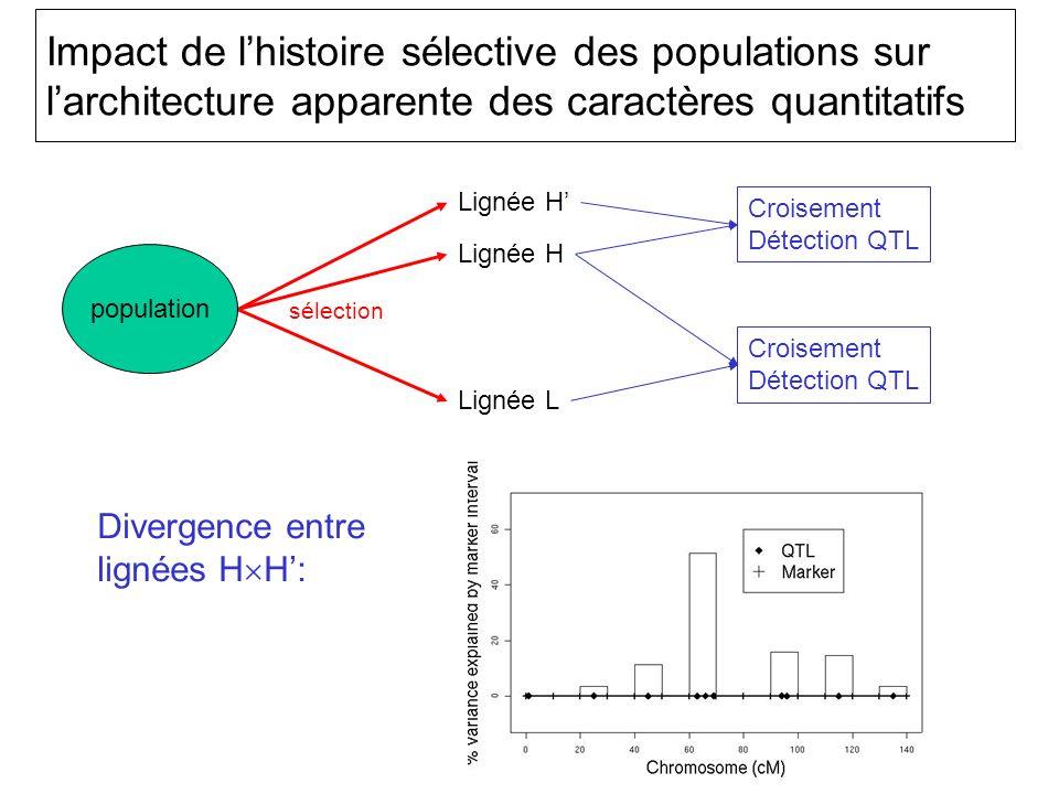 Impact de l'histoire sélective des populations sur l'architecture apparente des caractères quantitatifs