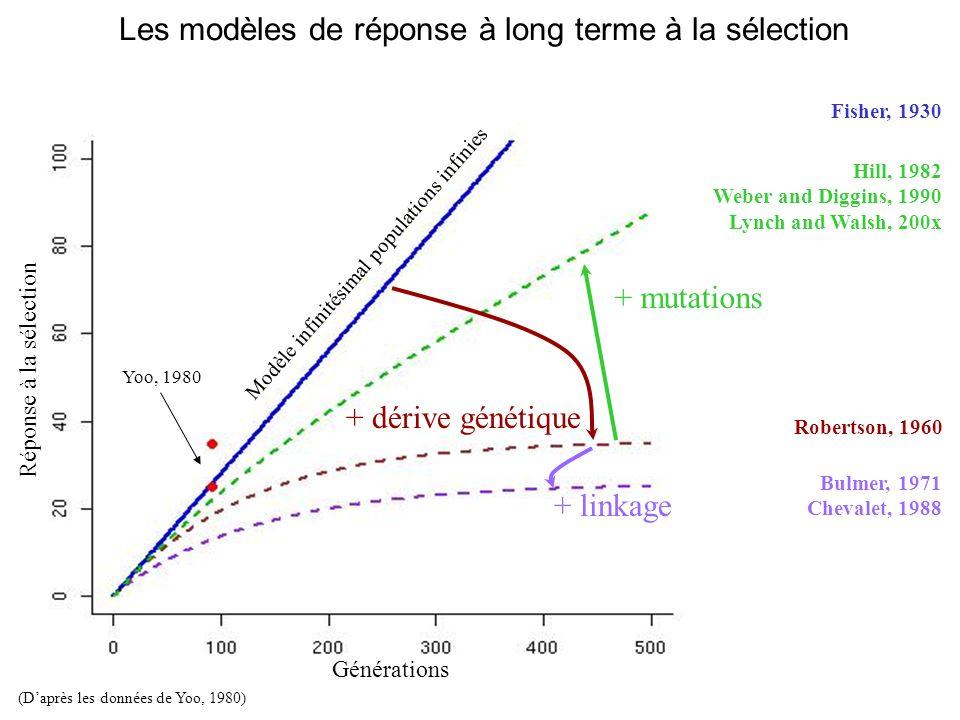 Les modèles de réponse à long terme à la sélection