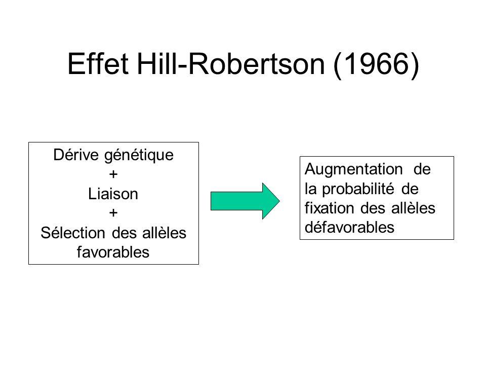 Effet Hill-Robertson (1966)
