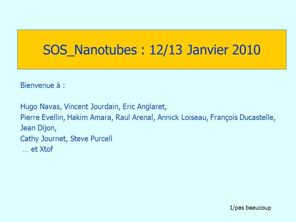 SOS_Nanotubes : 12/13 Janvier 2010