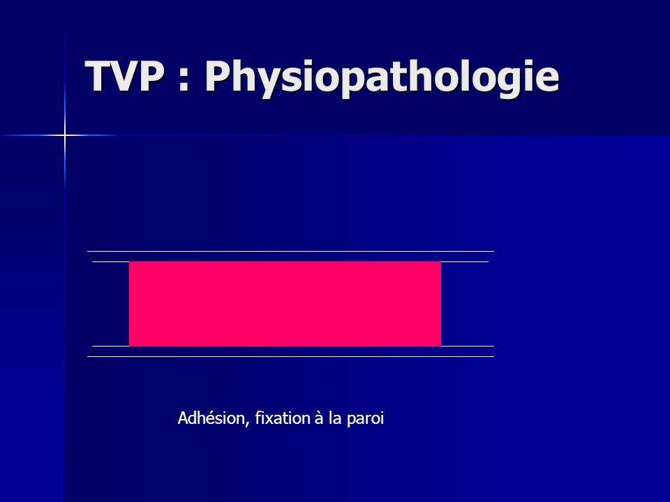 TVP : Physiopathologie