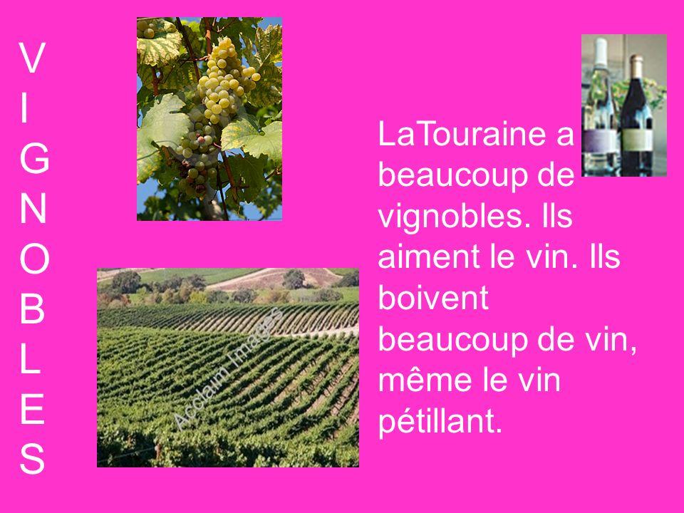 V I. G. N. O. B. L. E. S. LaTouraine a beaucoup de vignobles.
