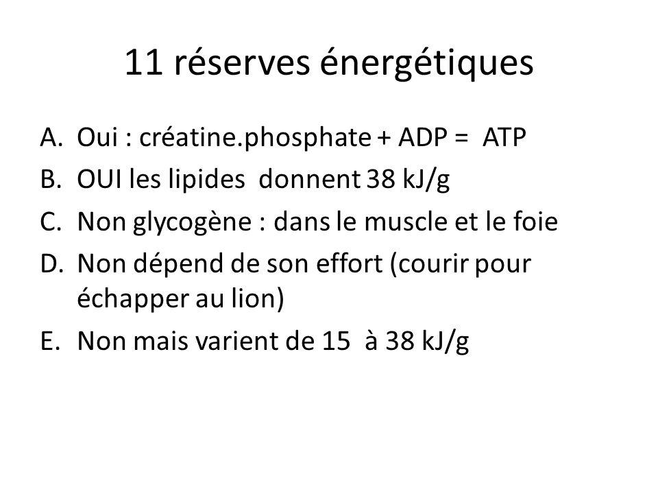 11 réserves énergétiques