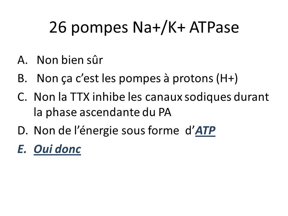 26 pompes Na+/K+ ATPase Non bien sûr