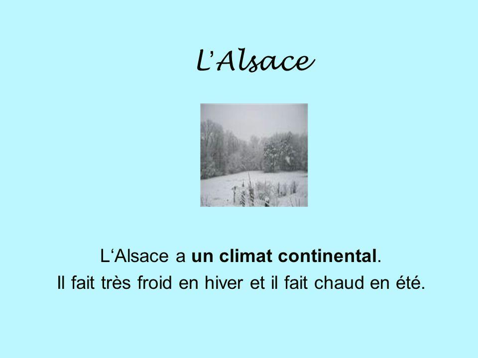 L'Alsace L'Alsace a un climat continental.