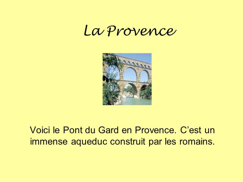 La Provence Voici le Pont du Gard en Provence. C'est un immense aqueduc construit par les romains.