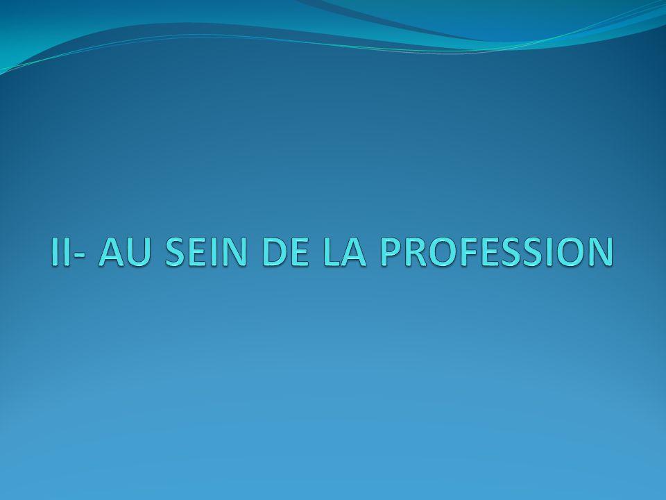 II- AU SEIN DE LA PROFESSION