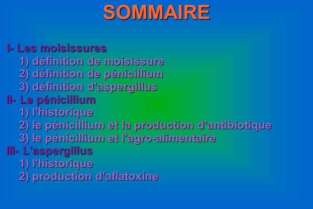 SOMMAIRE I- Les moisissures 1) définition de moisissure