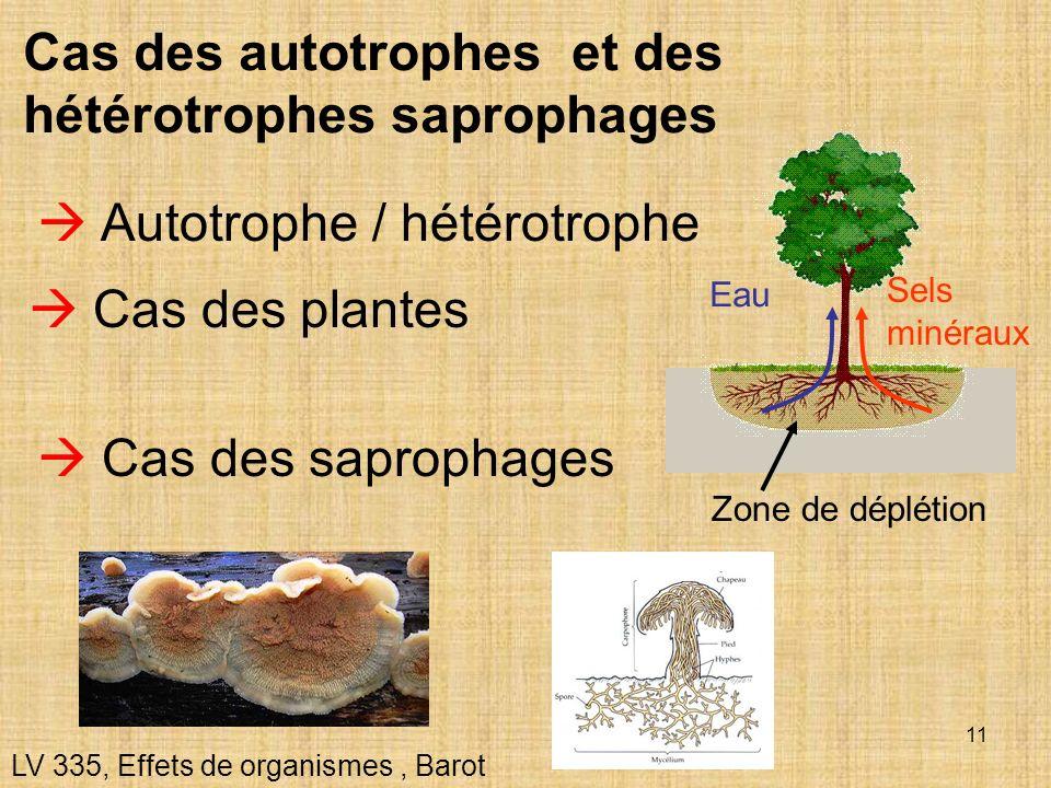 Cas des autotrophes et des hétérotrophes saprophages