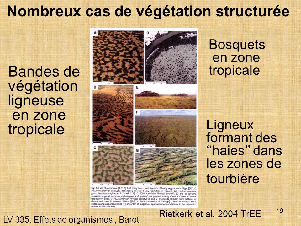 Nombreux cas de végétation structurée