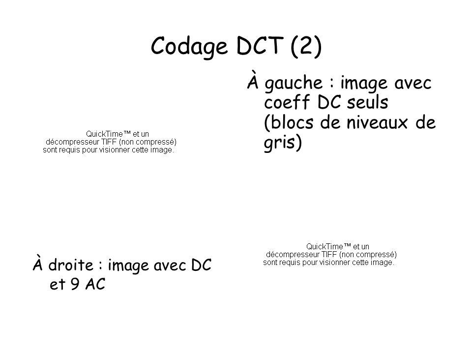 Codage DCT (2) À gauche : image avec coeff DC seuls (blocs de niveaux de gris) À droite : image avec DC et 9 AC.