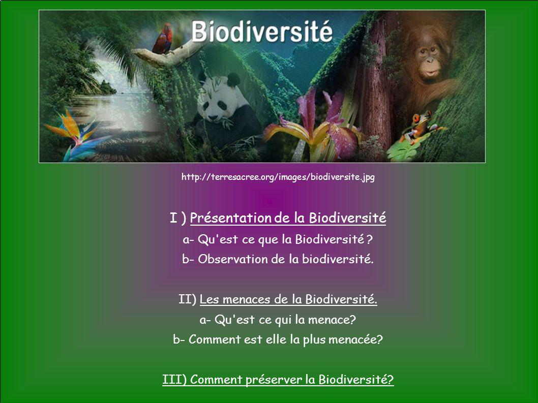 I ) Présentation de la Biodiversité