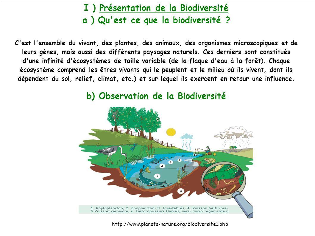 I ) Présentation de la Biodiversité a ) Qu est ce que la biodiversité