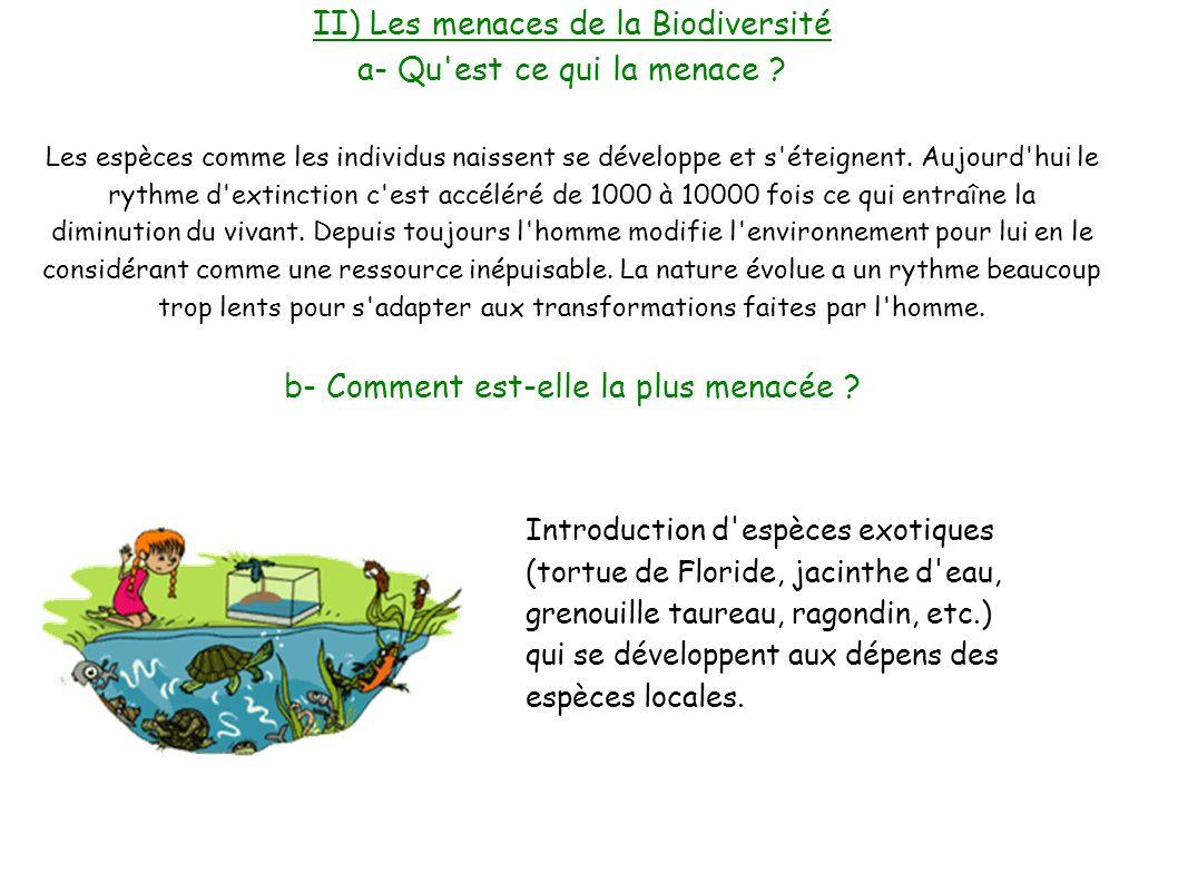 I pr sentation de la biodiversit ppt video online - L eau du robinet c est pour les grenouilles ...