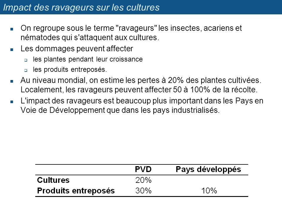 Impact des ravageurs sur les cultures
