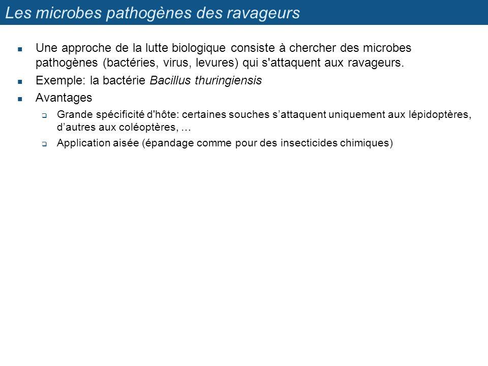 Les microbes pathogènes des ravageurs