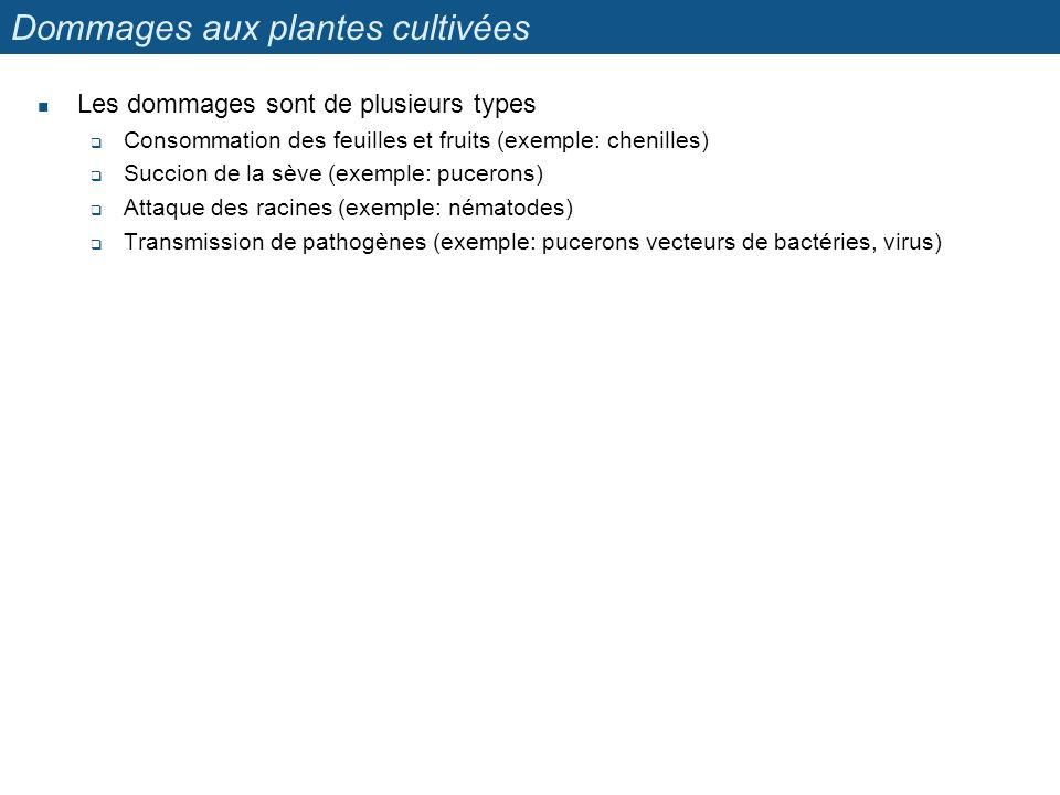 Dommages aux plantes cultivées
