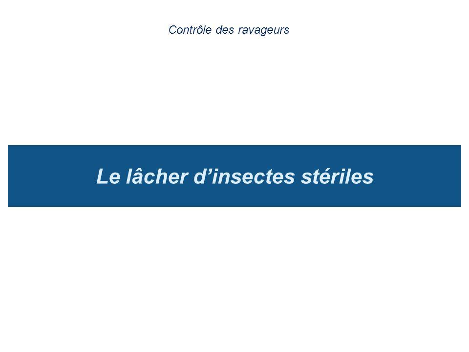 Le lâcher d'insectes stériles