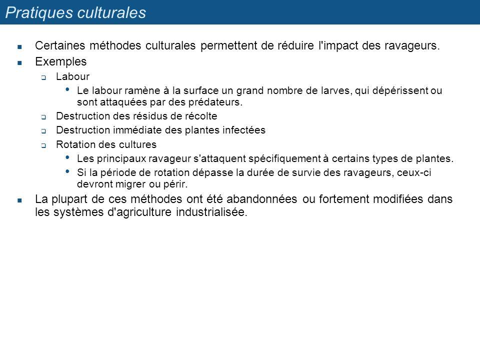 Pratiques culturales Certaines méthodes culturales permettent de réduire l impact des ravageurs. Exemples.