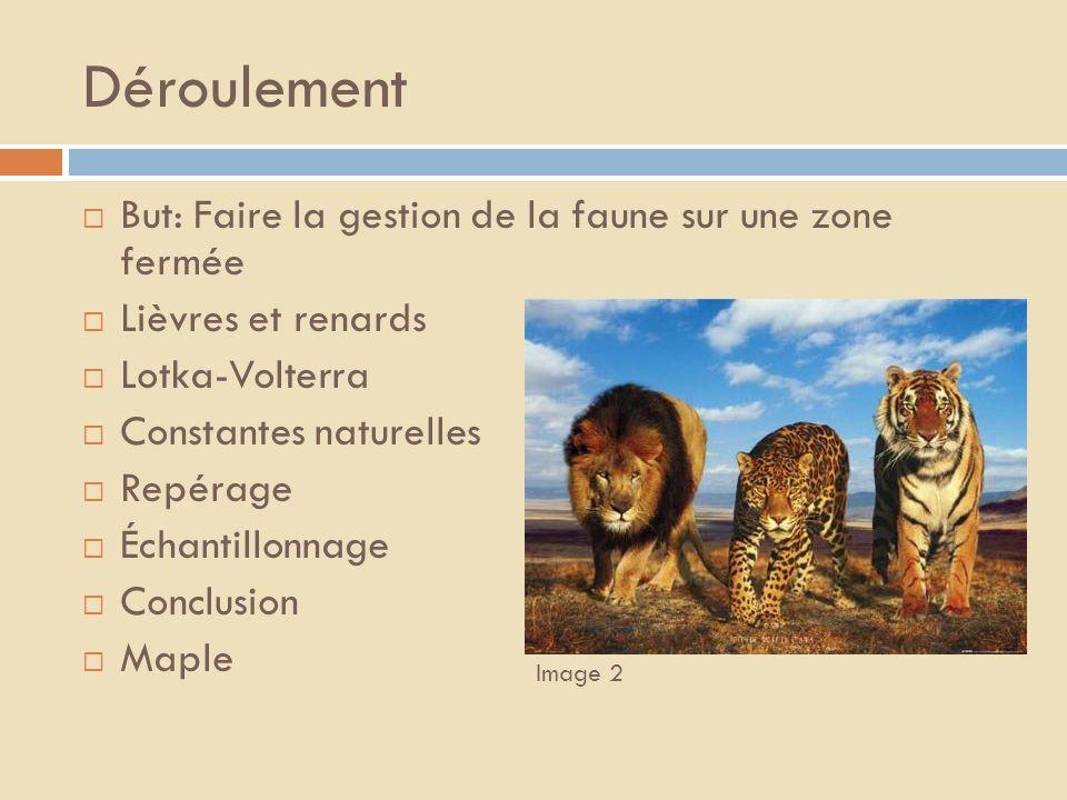 Déroulement But: Faire la gestion de la faune sur une zone fermée
