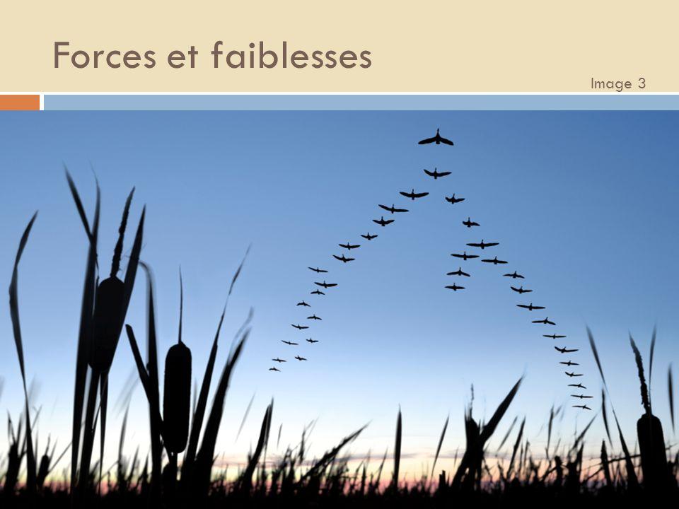 Forces et faiblesses Image 3