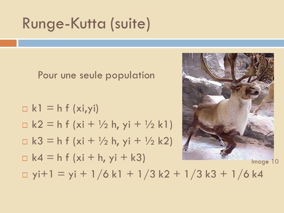 Runge-Kutta (suite) Pour une seule population k1 = h f (xi,yi)