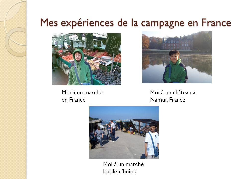 Mes expériences de la campagne en France