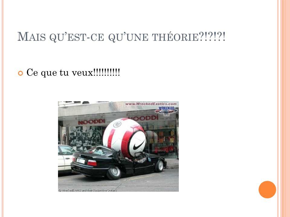 Mais qu'est-ce qu'une théorie ! ! !