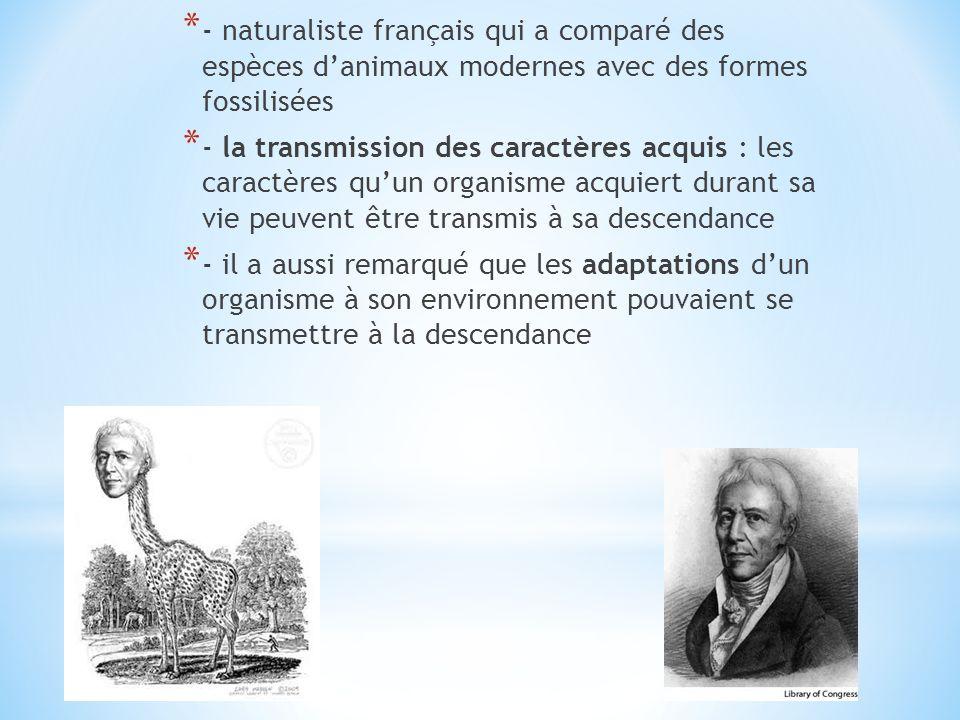 - naturaliste français qui a comparé des espèces d'animaux modernes avec des formes fossilisées