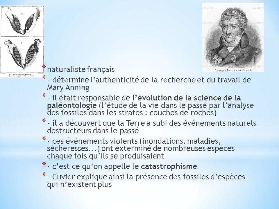 naturaliste français - détermine l'authenticité de la recherche et du travail de Mary Anning.