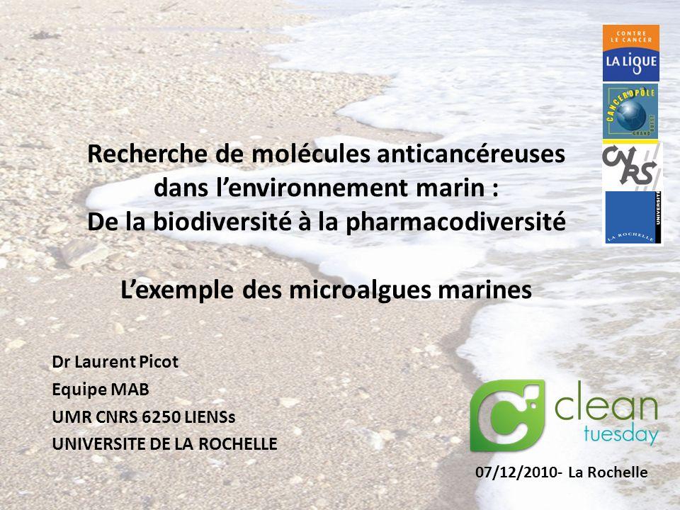 Recherche de molécules anticancéreuses dans l'environnement marin :