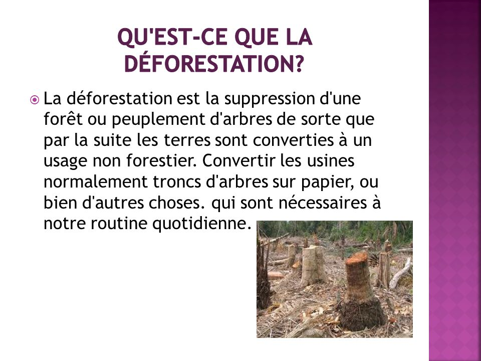 Qu est-ce que la déforestation