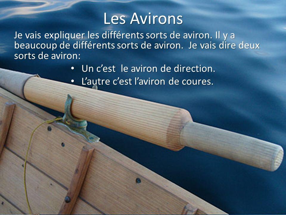 Les Avirons Je vais expliquer les différents sorts de aviron. Il y a beaucoup de différents sorts de aviron. Je vais dire deux sorts de aviron: