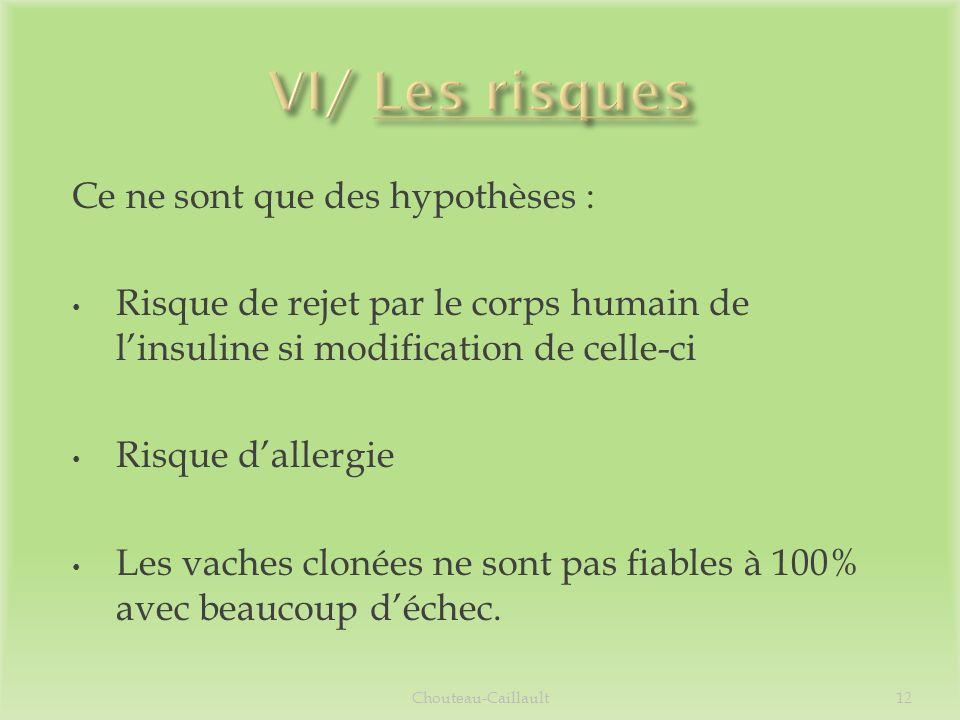 VI/ Les risques Ce ne sont que des hypothèses :