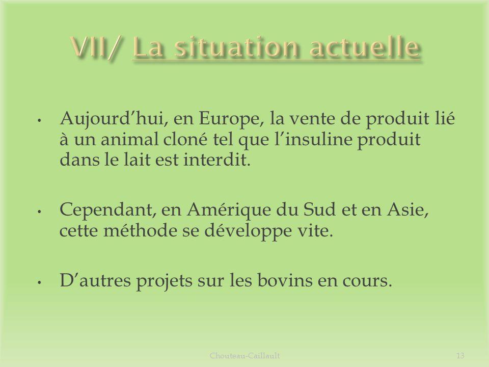 VII/ La situation actuelle