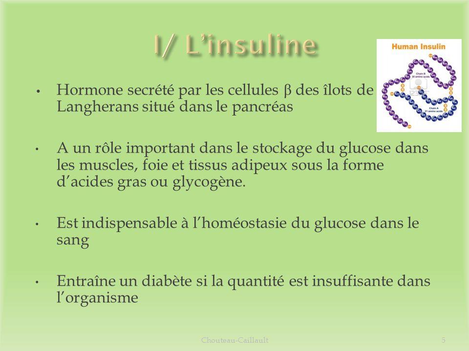 I/ L'insuline Hormone secrété par les cellules β des îlots de Langherans situé dans le pancréas.