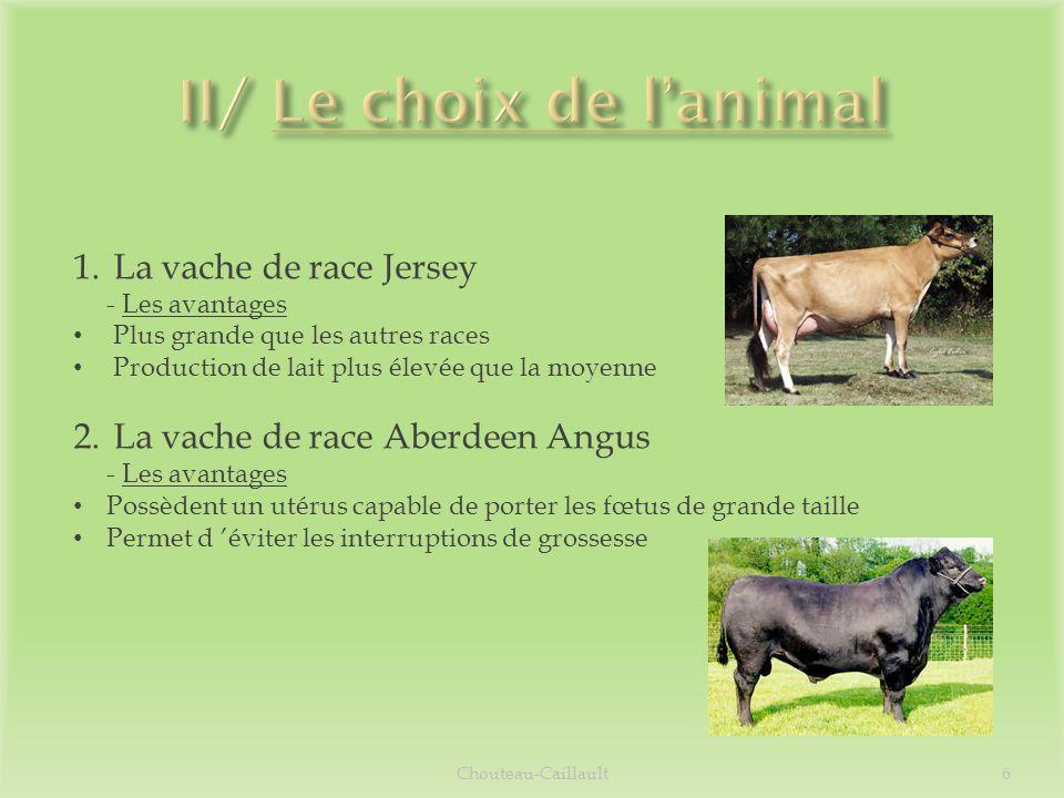 II/ Le choix de l'animal