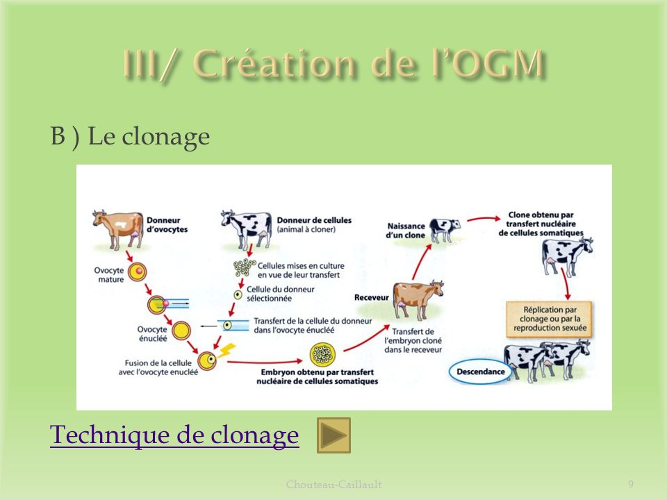 III/ Création de l'OGM B ) Le clonage Technique de clonage
