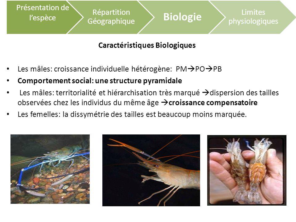 Caractéristiques Biologiques