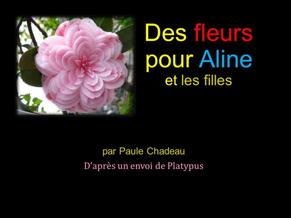 Des fleurs pour Aline et les filles