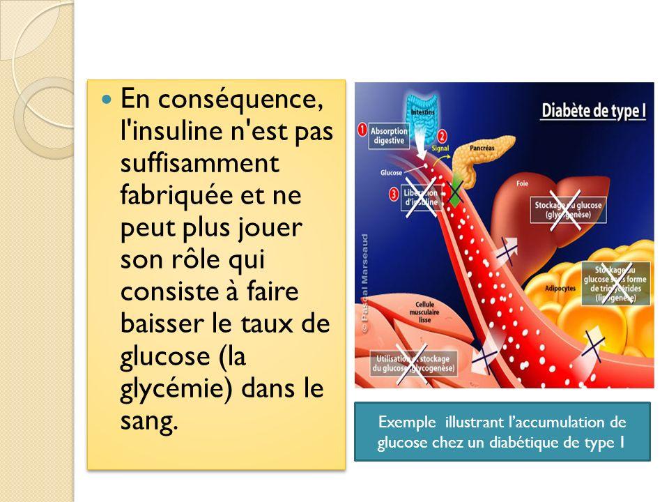 En conséquence, l insuline n est pas suffisamment fabriquée et ne peut plus jouer son rôle qui consiste à faire baisser le taux de glucose (la glycémie) dans le sang.
