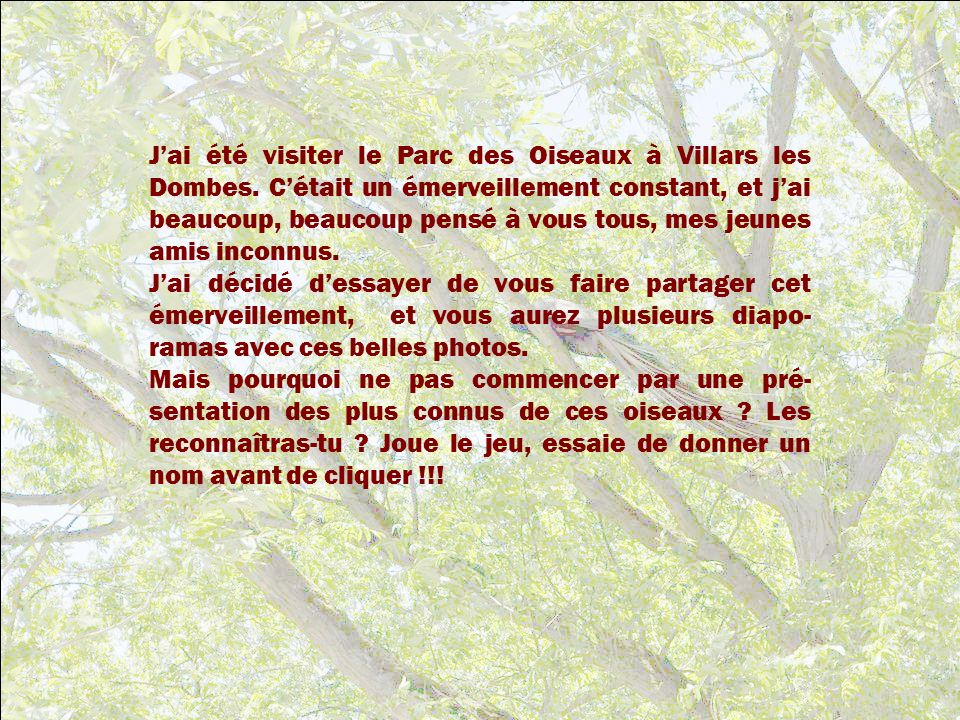 J'ai été visiter le Parc des Oiseaux à Villars les Dombes