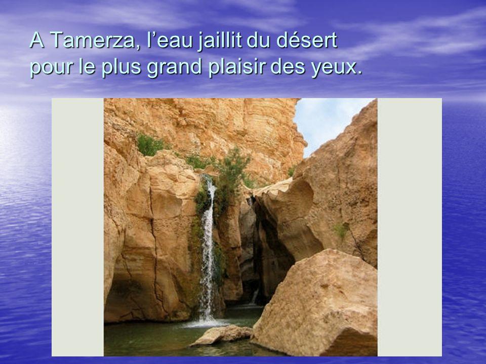 A Tamerza, l'eau jaillit du désert pour le plus grand plaisir des yeux.