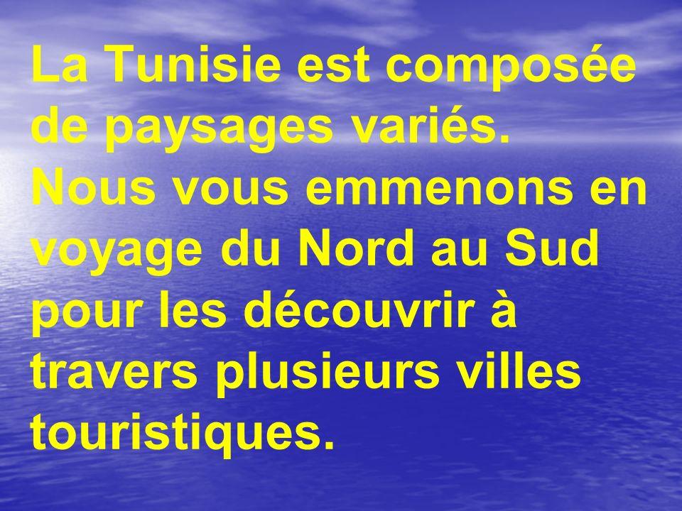 La Tunisie est composée de paysages variés