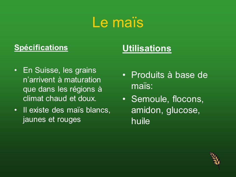 Le maïs Utilisations Produits à base de maïs: