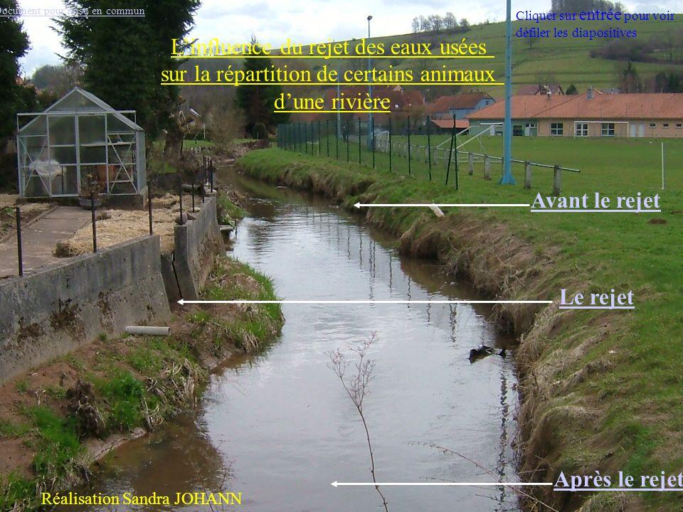 L'influence du rejet des eaux usées