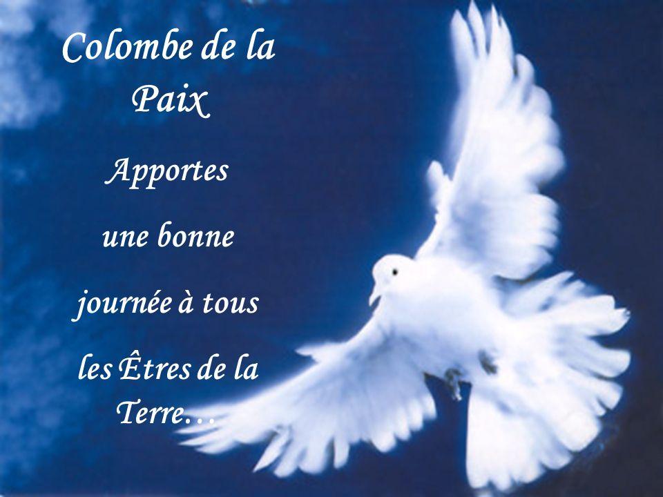 Colombe de la Paix Apportes une bonne journée à tous