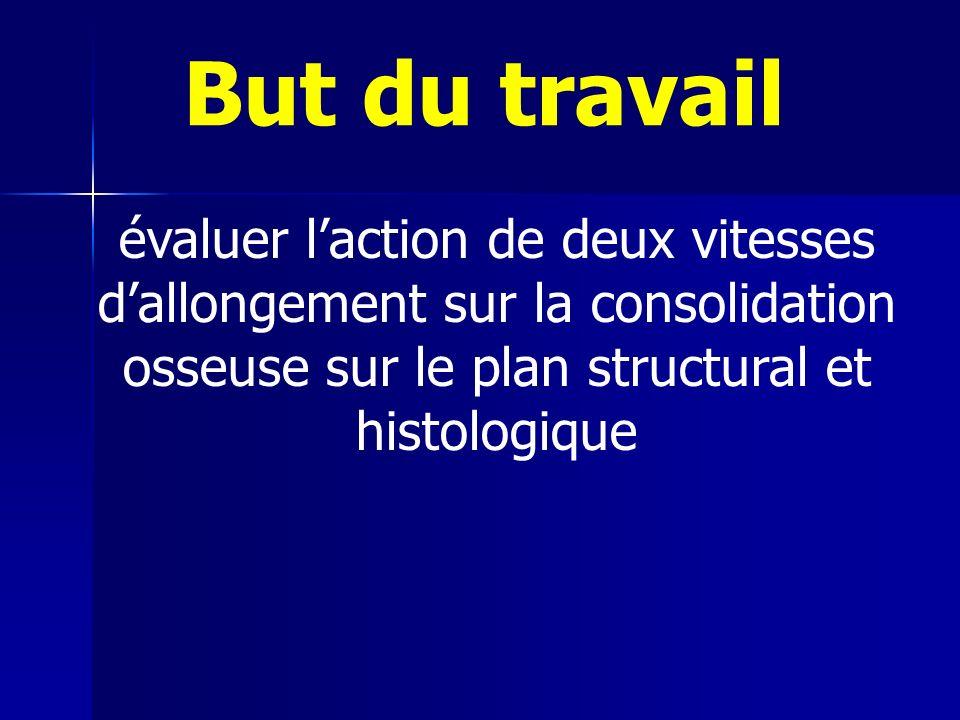 But du travail évaluer l'action de deux vitesses d'allongement sur la consolidation osseuse sur le plan structural et histologique.