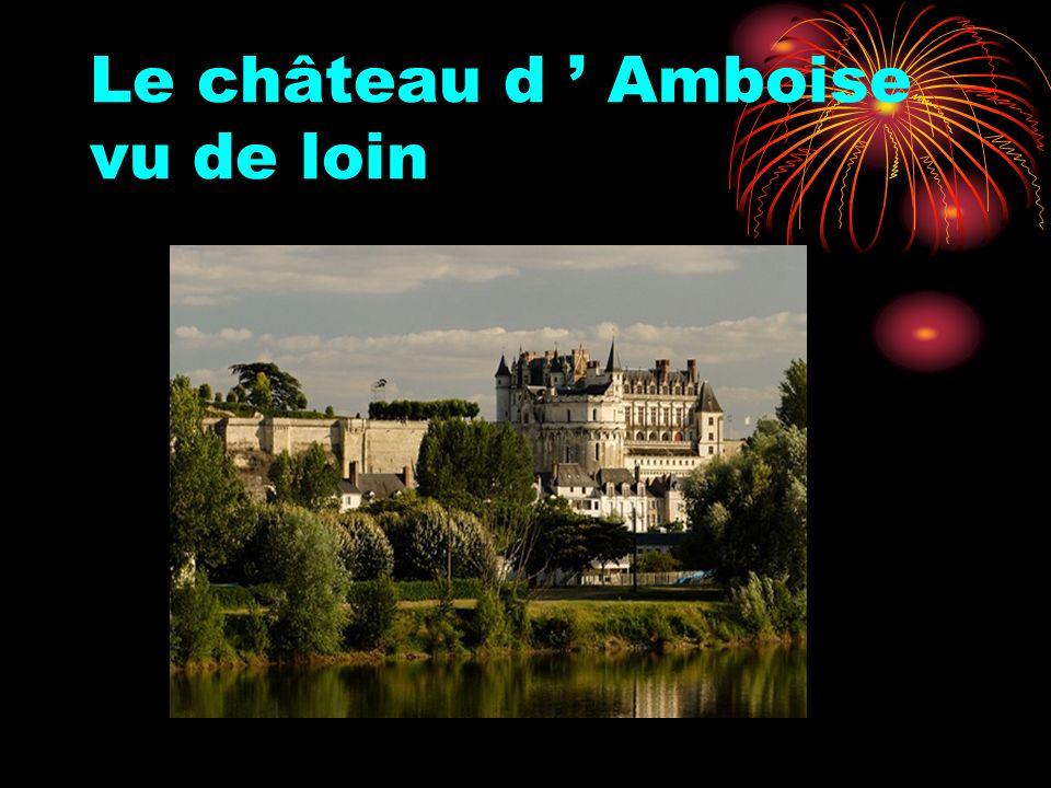 Le château d ' Amboise vu de loin